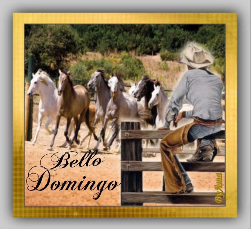 Gaucho Argentino con Guardamonte y Tropilla de Caballos Criollos  190613014516105083