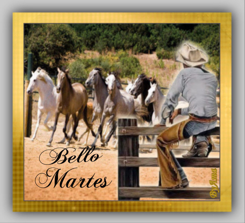 Gaucho Argentino con Guardamonte y Tropilla de Caballos Criollos  19061301451885013