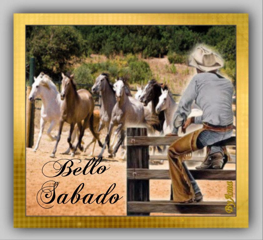 Gaucho Argentino con Guardamonte y Tropilla de Caballos Criollos  190613014519503459