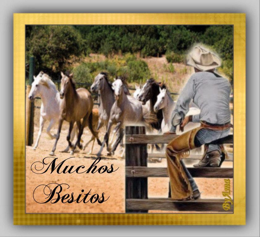 Gaucho Argentino con Guardamonte y Tropilla de Caballos Criollos  19061301452170345