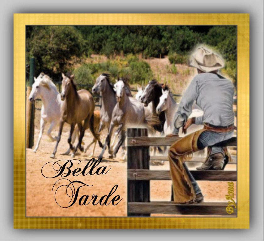 Gaucho Argentino con Guardamonte y Tropilla de Caballos Criollos  190613014522411382