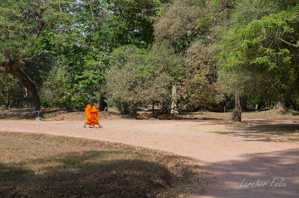 Fil orange dans les temples d'Angkor 190615073135182988