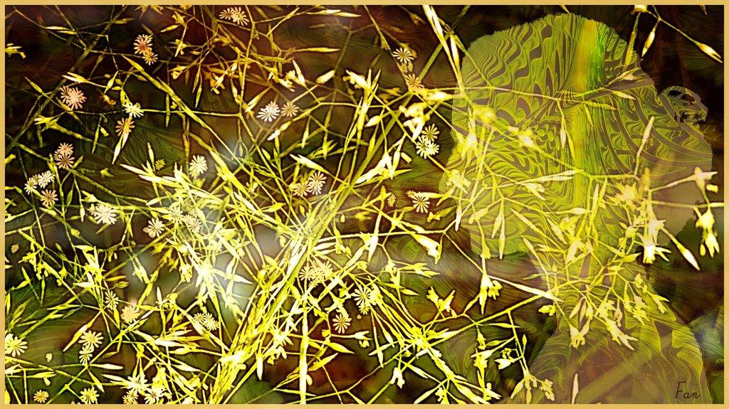 Fabrique d' IMAGES de Vagabonde (album:2) - Page 2 190619040234258962