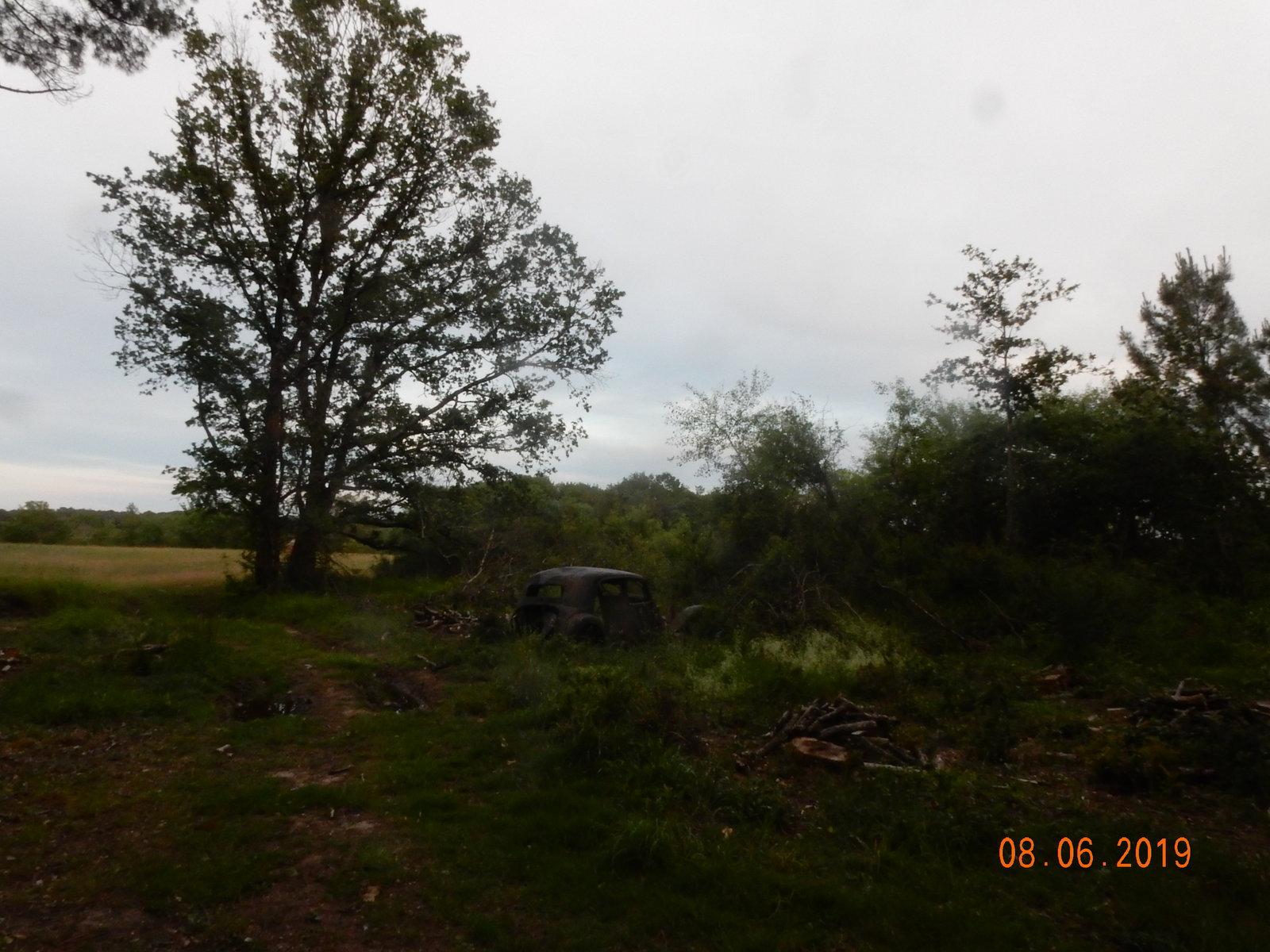 Forêt de Leugny rond point des chênes (1)