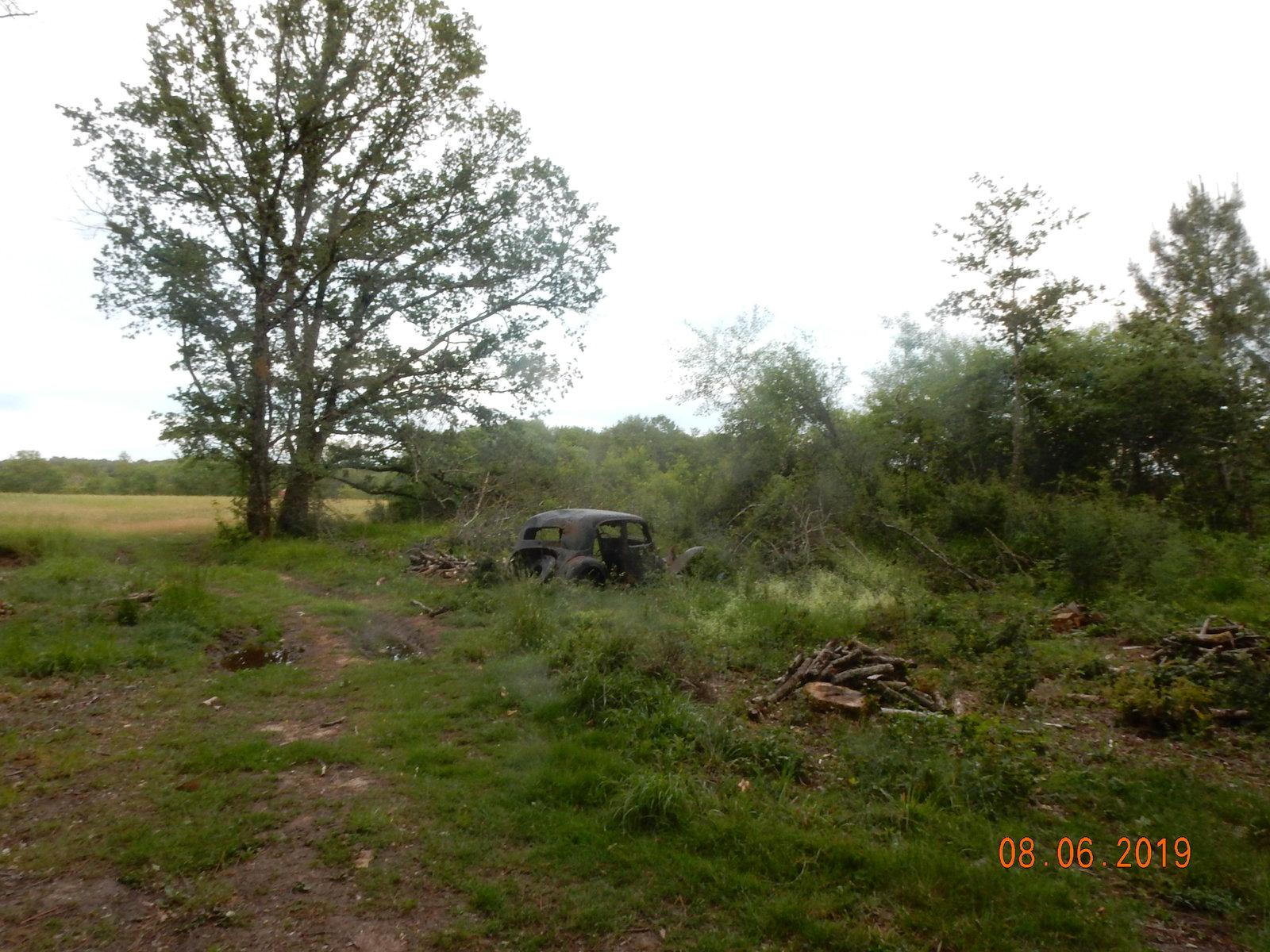 Forêt de Leugny rond point des chênes (2)