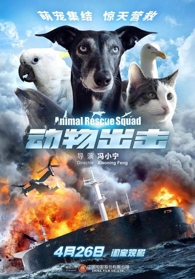 這邊是動物出擊Animal Rescue Squad.2019.HD-1080p[MKV@1.7G@多空@簡英]圖片的自定義alt信息;551402,734997,haokuku,59