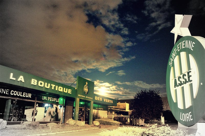 19.1 La boutique des verts de nuit