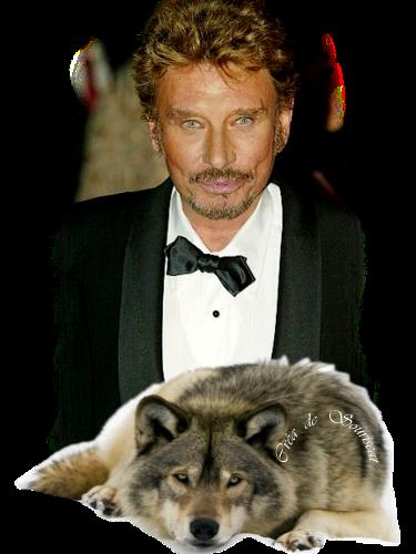 johnny et le loup