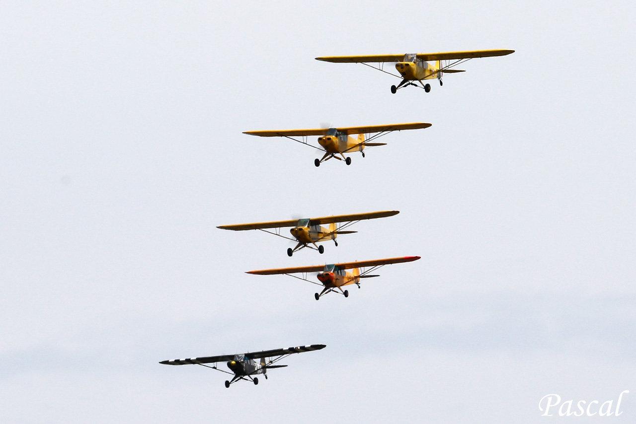 Piper Opération Cobra 2019 190804100346658650