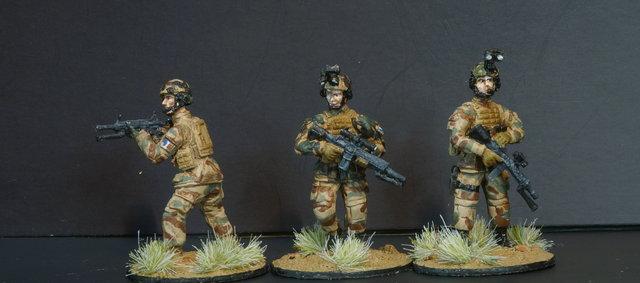 Opération Serval, Mali 2014, 28mm 190821062511801762