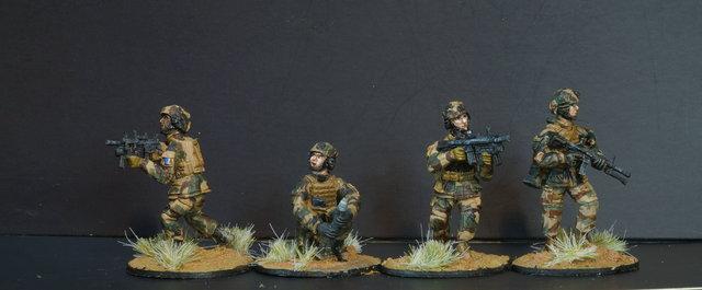 Opération Serval, Mali 2014, 28mm 190821062905753588