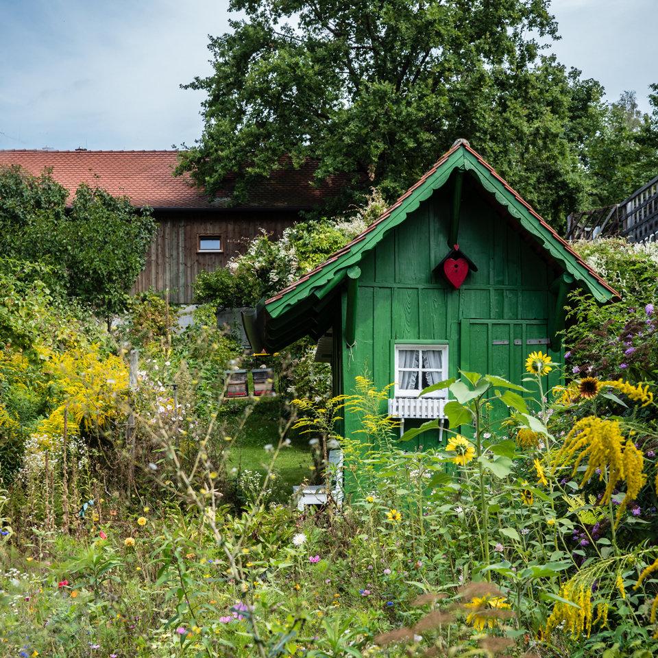 La cabane au fond du jardin 190829101741966901