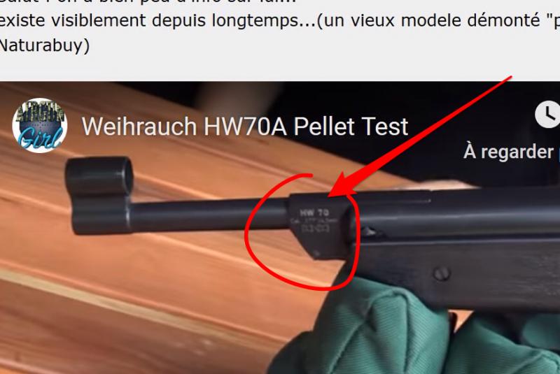 Qui connait le Weihrauch hW70 ? 190909110109308174