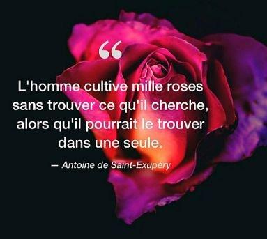 fr-4be3d9oy8n-citation-antoine-de-saint-exupery-square