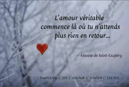ob_f66642_la-vache-rose-st-exupery-25