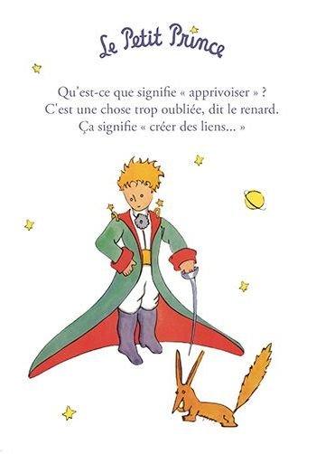 carte-le-petit-prince-15x21-cm-qu-est-ce-que-signifie-apprivoiser
