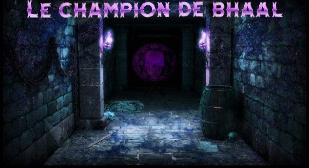 Affiche_Le_champion_de_Bhaal2