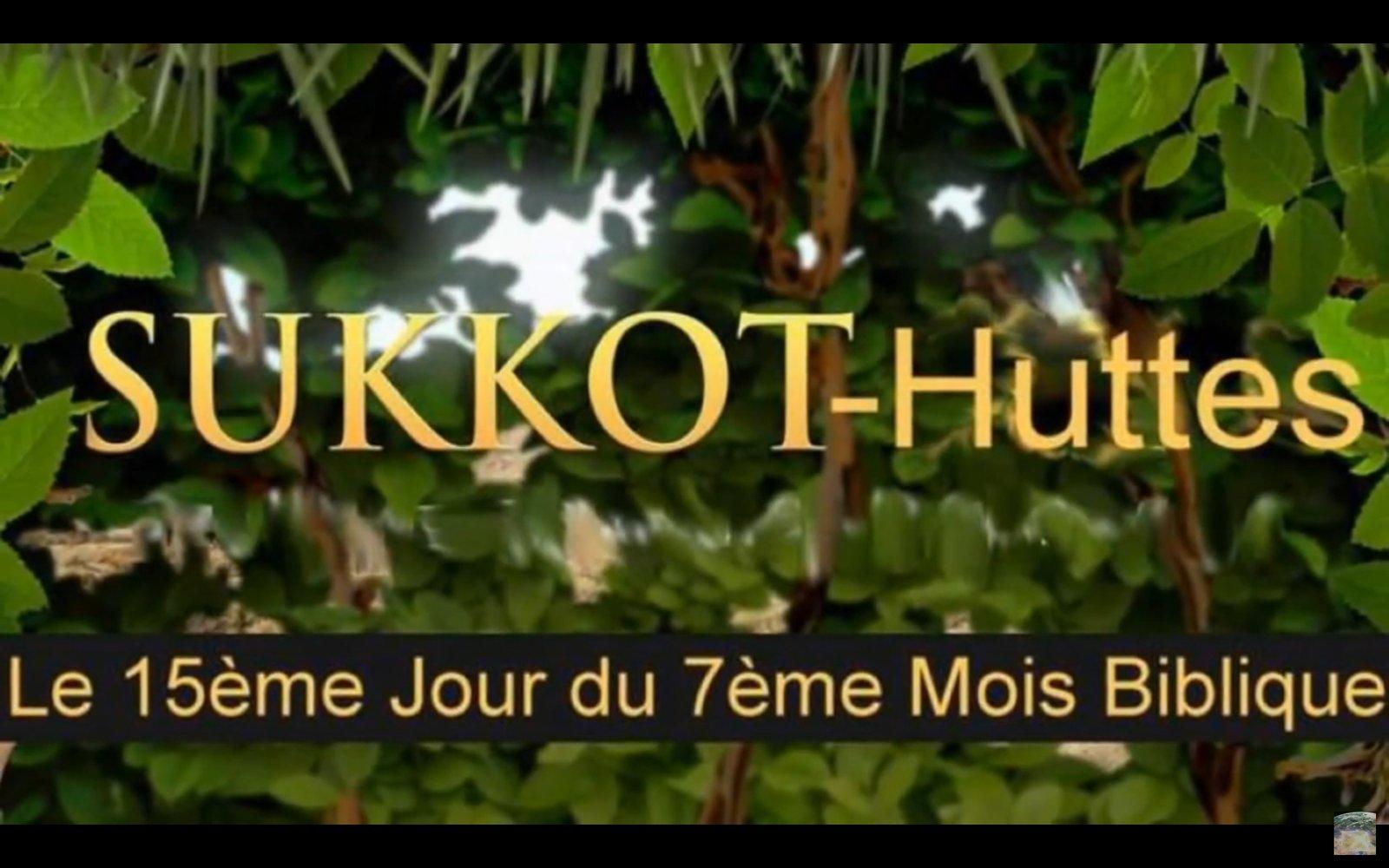Soukkoth du Mercredi 6 au Mercredi 13 Octobre 190929044110322197