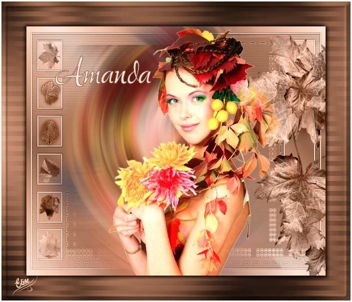 Amanda(Psp) 191002082112563467