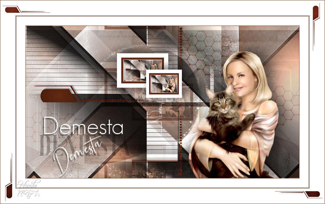 Demesta(Psp) 1910020828485899