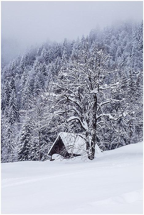En attendant l'hiver 191006083212861804