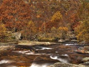 automne-sur-les-pyrenees-ariegeoises-abcd4628-7d22-4abc-9245-5f784d8d4211