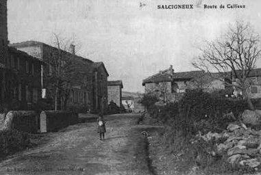 163 . Salcigneux