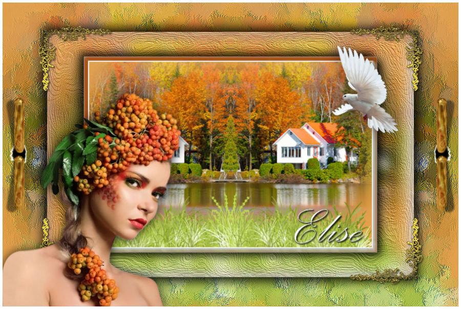 Elise(Psp) 191109054054960453