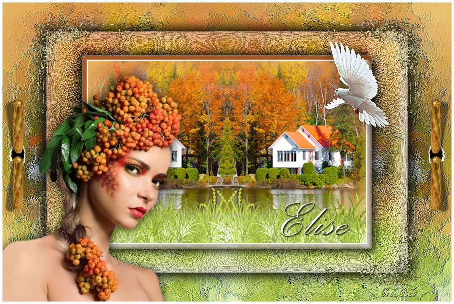 Elise(Psp) 191112083958871321