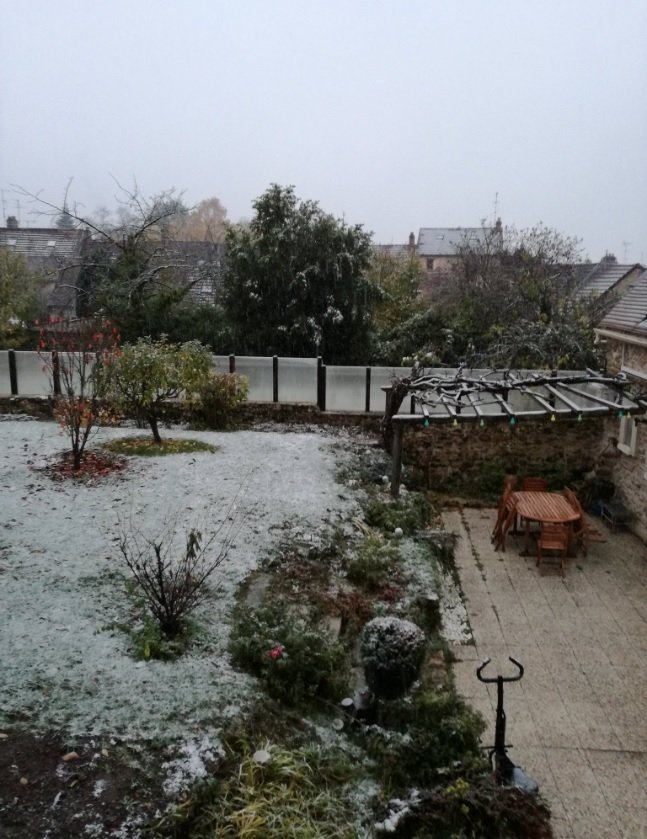 2019-11-15 Tweet neige Paris - Photo
