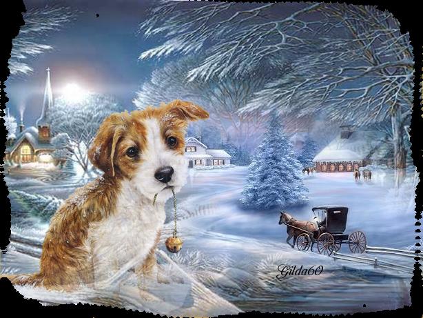 hiver chien Gilda