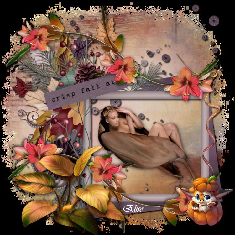 L'automne de Sasha (Psp) 191126095715953318