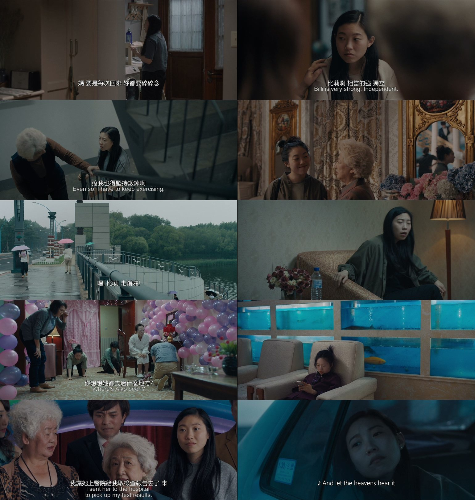 The.Farewell.2019.CHINESE.ENSUBBED.1080p.BluRay.H264.AAC-VXT