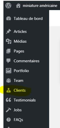 Créer des items / Objets WordPress