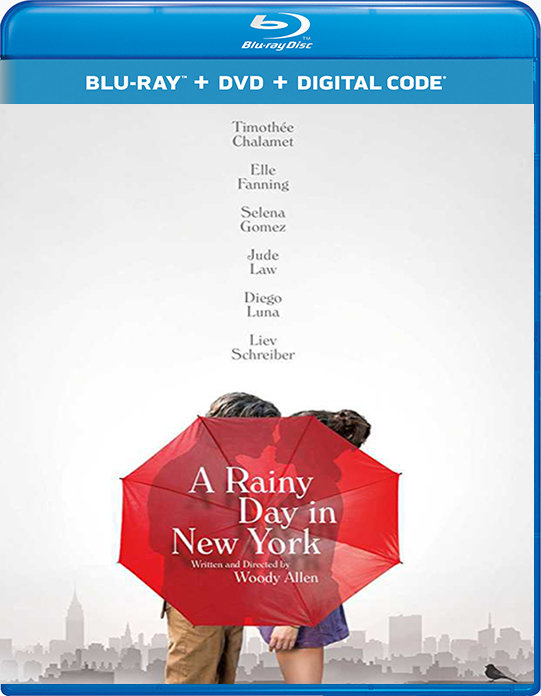 A Rainy Day in New York (2019) poster image