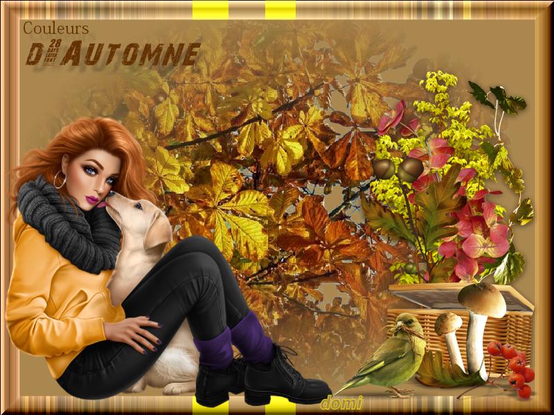 Automne (Nono) 191210124327327147