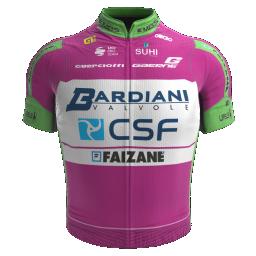 Bardiani - CSF - Faizane