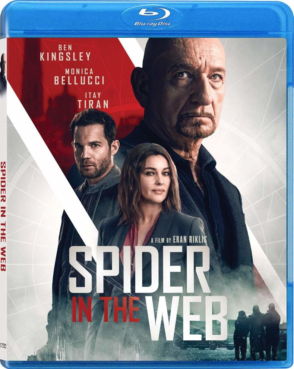 Spider in the Web (2019) poster image