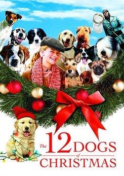 12 chiens pour Noël 1