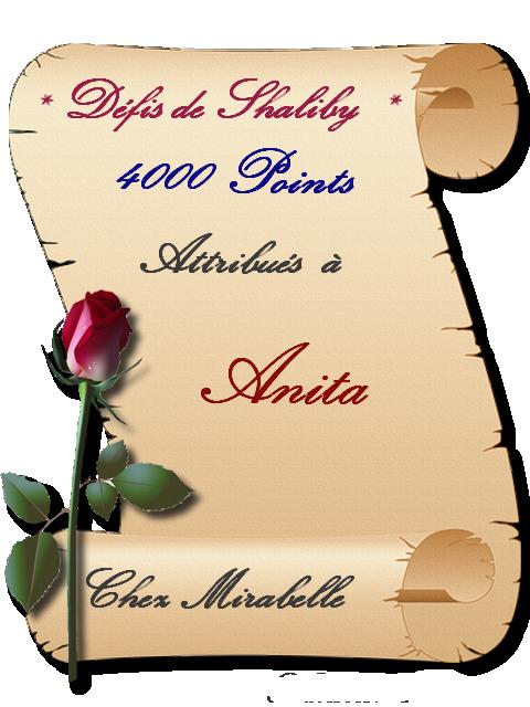 """Récompense : Anita - 4000 points """"Défis Shaliby """" 191229105152190141"""