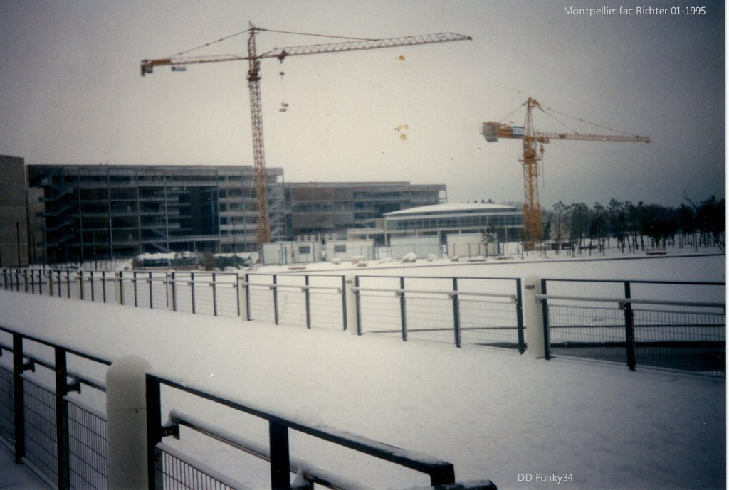 Potains chantier fac de Richter 01-1995
