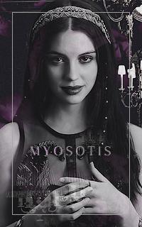 Myosotis (Evey)
