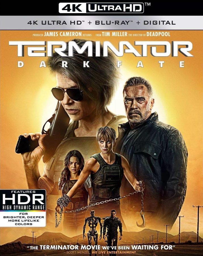 Terminator: Dark Fate (2019) poster image