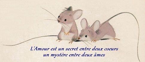 duo souris - L'Amour ...