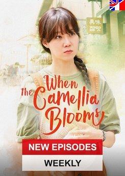 When the Camellia Blooms - Saison 1