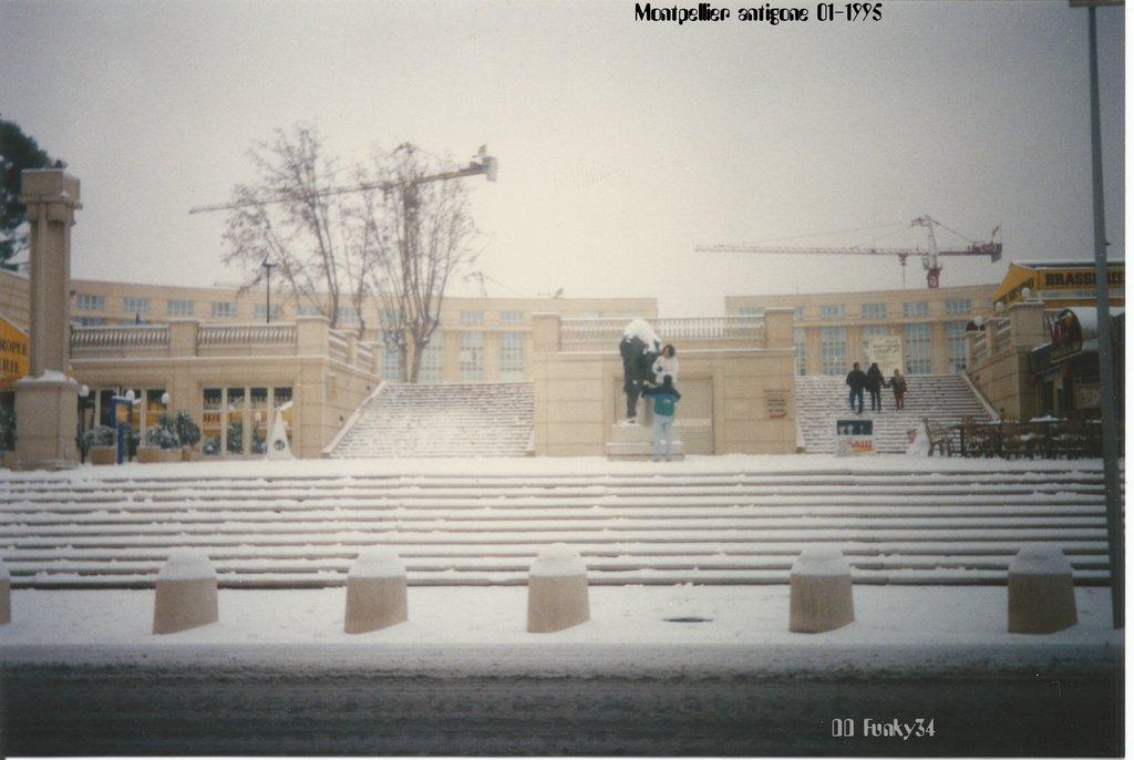Potains du chantier de la piscine olympique Antigone Janvier 19