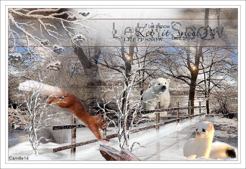 En hiver - Page 2 200220112032861641