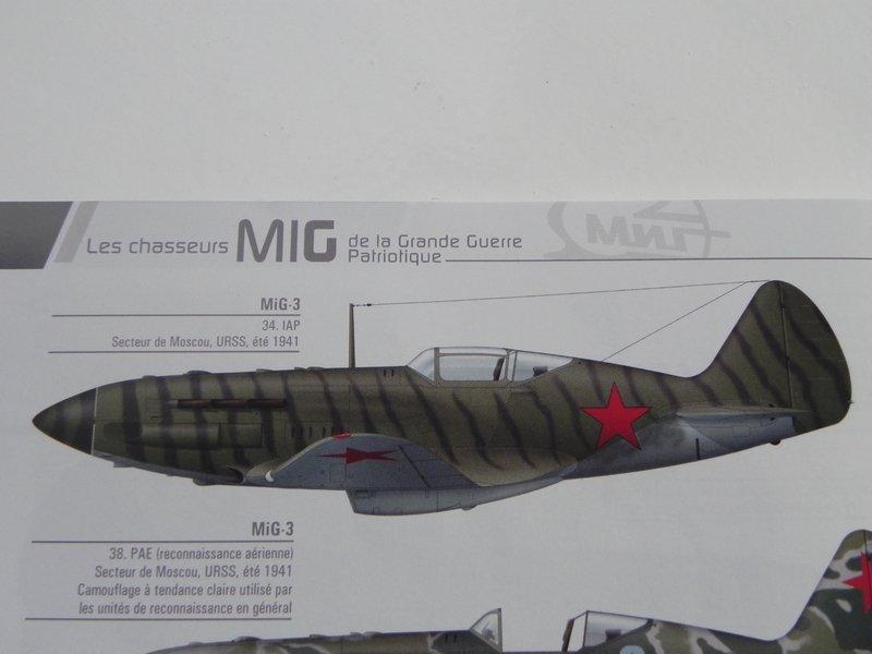 """Mig 3   VVS 34ème IAP 1941 - déco """" Tigre""""  200301052417121356"""
