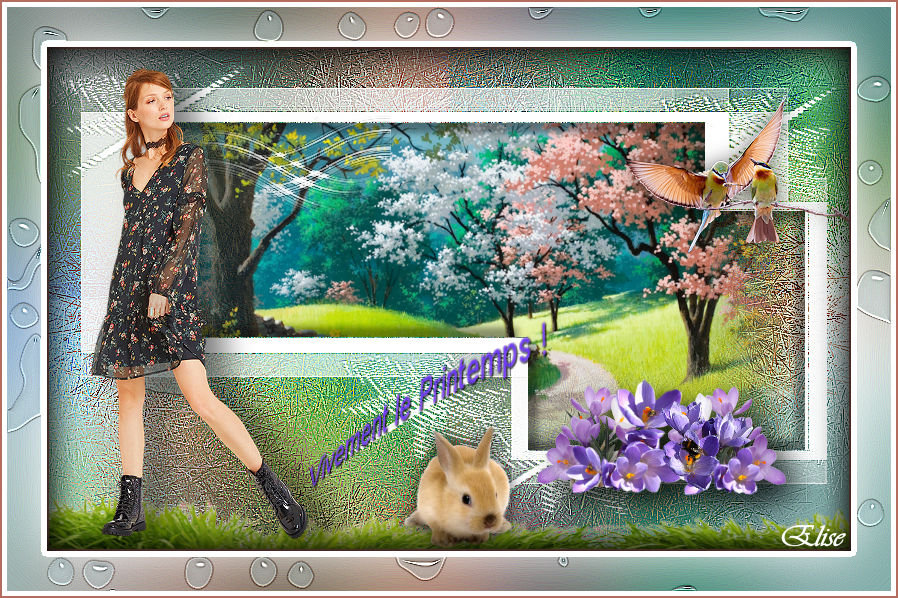 Vivement le printemps   ( psp) 20030111114926182