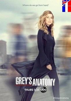 Grey's Anatomy - Saison 16 Épisodes 5+6 Streaming VF
